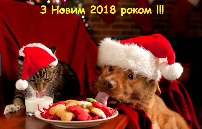 Хай Новий рік з добром до Вас прийде,<br />Здоров'я, сміх і радість принесе,<br />Різдво з колядою хай завітає,<br />Щастям безмежним Вас благословляє!