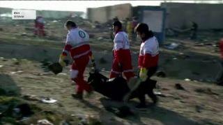 Авіакатастрофа літака Boeing 737 МАУ в Ірані